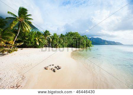 Beach on Moorea island in French Polynesia
