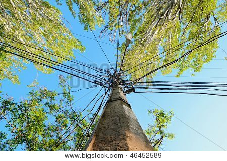 Single Pole With A Lot Of Cables