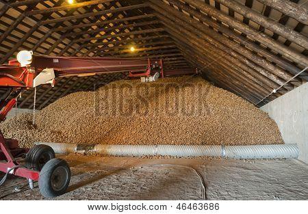Idaho Potato Storage