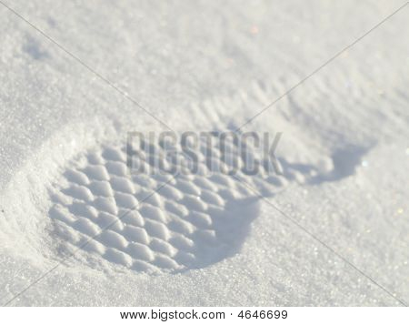 Footprint In The Snow - Closeup