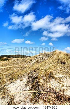 Dunes in Denmark