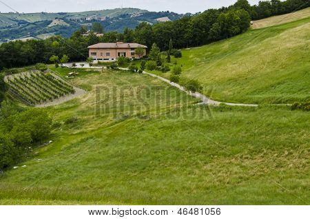 Eco-tourism - Farmhouse, vineyards and field