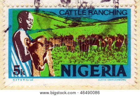 Cattle Ranching In Nigeria