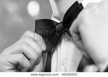 Man's hands touches bow-tie on a suit