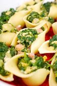 Pasta Shells Stuffed With Spinach And Eggs