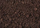 stock photo of humus  - Soil surface background - JPG