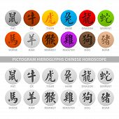 picture of pack-rat  - Illustration pictogram hieroglyphs chinese horoscope - JPG