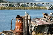 stock photo of rogue  - Western Gull Larus occidentalis on a pier in Gold Beach Oregon - JPG