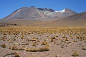 Great Volcano Altiplano Bolivia