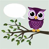 cute owl message
