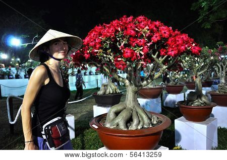 Bonsai Flower