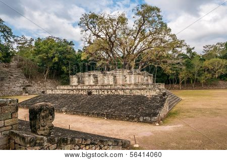 Ball Court In Copan Ruins
