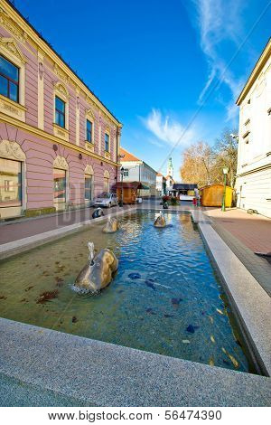 Town Of Bjelovar Square Fountain