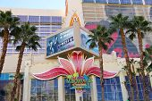 Casino Margaritaville At The Flamingo   In Las Vegas