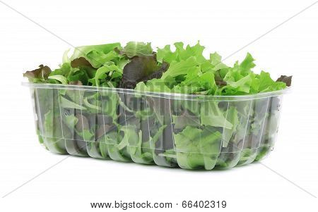 Green and red leaf of lettuce in box.
