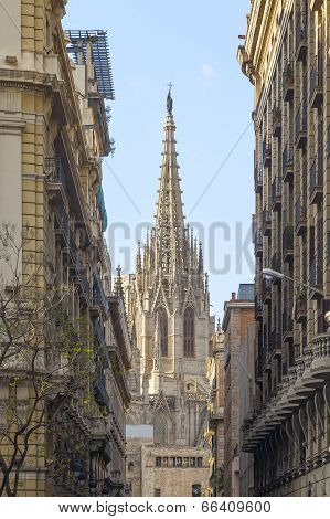 Barcelona Cathedral View