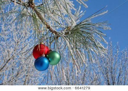 Three Balls On Pines Branch