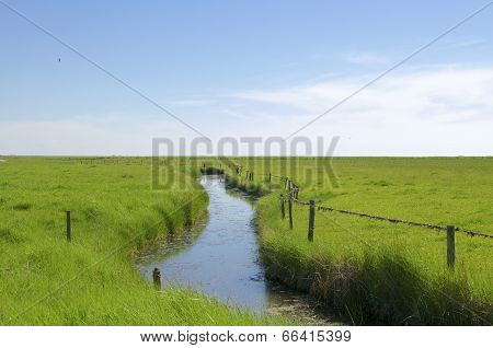 The Hallig Langeness in the wadden Sea