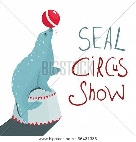 Fur Seal Circus Show Lettering Poster