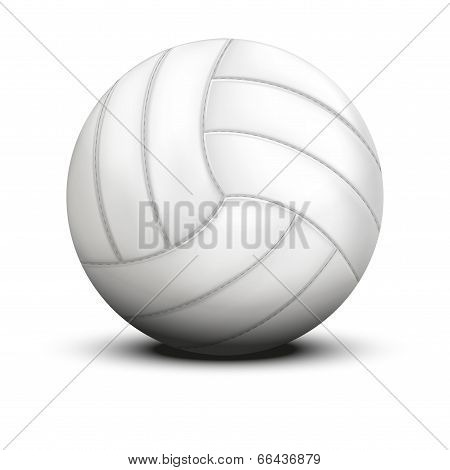 Volleyball in traditional one color on white background