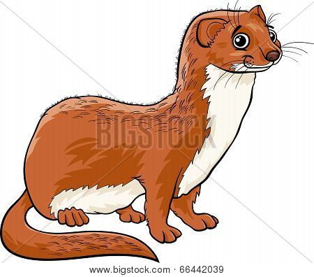 Weasel Animal Cartoon Illustration