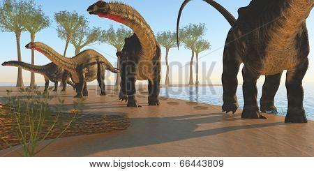 Apatosaurus Dinosaur Shore