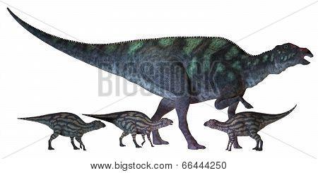 Maiasaura Dinosaur With Babies