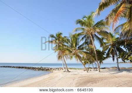 Key West Beach In Florida