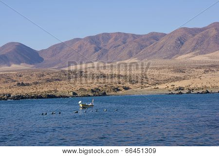Fishing Boat off the Atacama