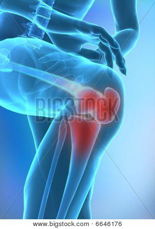 Menschlichen Knie
