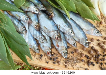 Fish With Fresh Bay Leaves