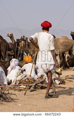 Pushkar, India - November 20: Pushkar Camel Mela (pushkar Camel Fair) On November 20, 2012 In Pushka