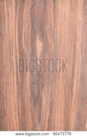 Walnut Wood Grain , Tree Background, Natural Rural Tree Background