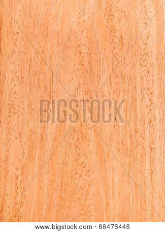 Texture Of Walnut, Wood Veneer, Natural Rural Tree Background