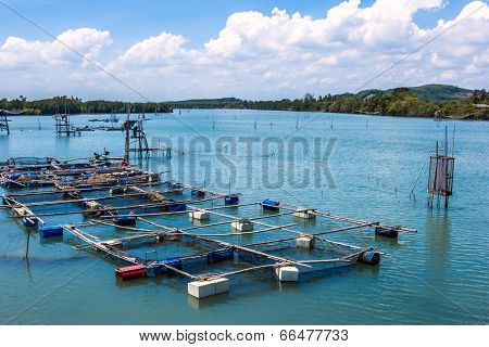 Fish and shrimp Cage aquaculture farming, Thailand