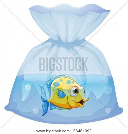 Illustration of a fish inside the plastic pouch on a white background