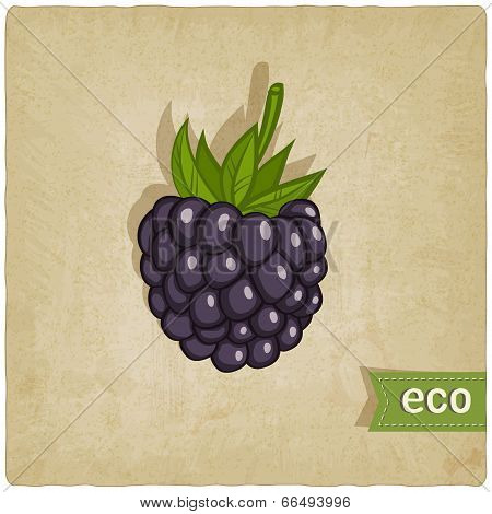 blackberry eco background