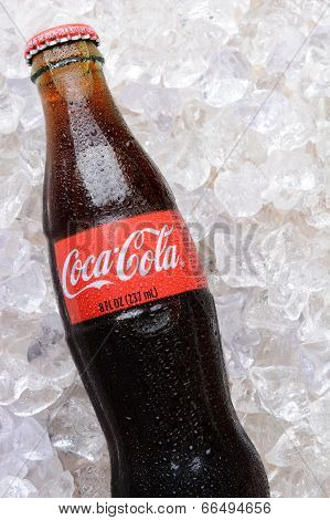 Coca-cola Bottle In Ice