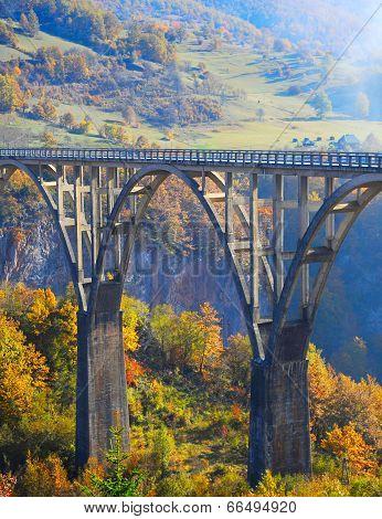 Djurdjevica Tara Bridge View