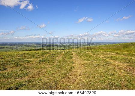 Scenic Hay Field
