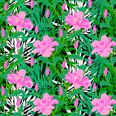 picture of jungle flowers  - Vector seamless floral pattern with tropical decor - JPG