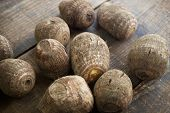 pic of taro corms  - Fresh harvested - JPG