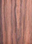 stock photo of walnut-tree  - walnut wood grain texture tree background natural rural tree background - JPG