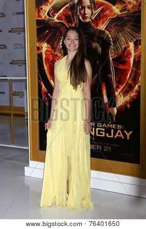 m LOS ANGELES - NOV 17:  Erika Bierman at the The Hunger Games: Mockingjay Part 1 Premiere at the Nokia Theater on November 17, 2014 in Los Angeles, CA