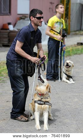 Two Blind People With Their Guide Dogs