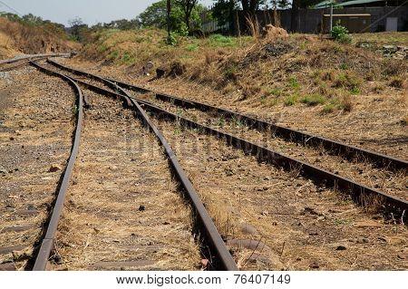 Old Overgrown Used Railway Tracks Intersection Merge