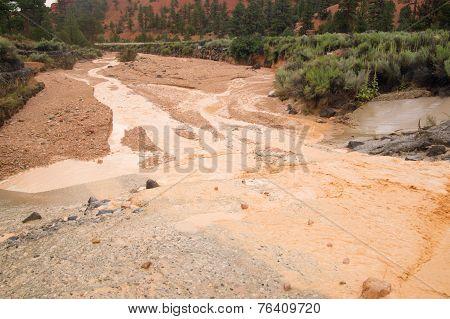 Flash Flood In Desert