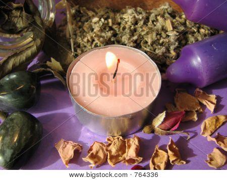 wiccan herbsb