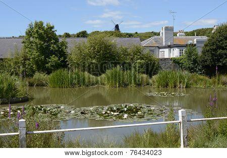 Village Pond At Rottingdean. Sussex. England