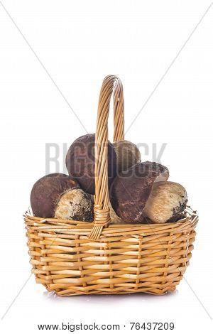 Boletus Edulis In A Basket Isolated On White